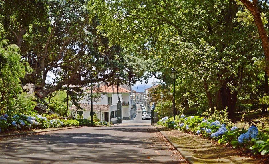 Jardim Jose do Canto, Ponta Delgada